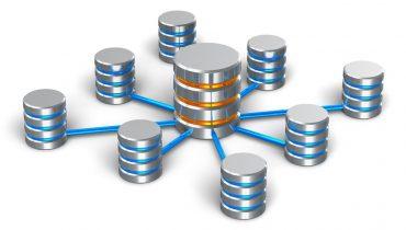 HostPLM toimii kunnianhimoisen kasvustrategian selkärankana